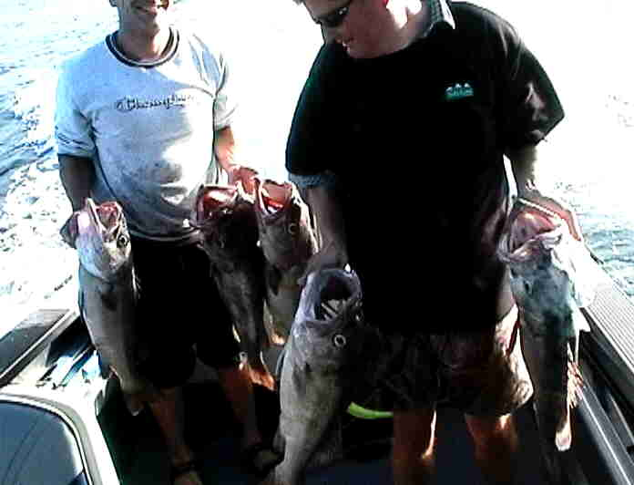 Grouper Fishing with Grant and Torren
