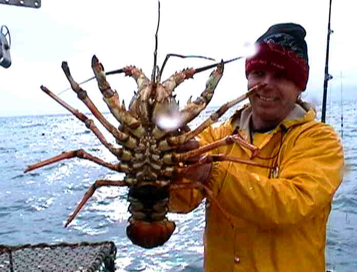 Steve with a Big Cray!